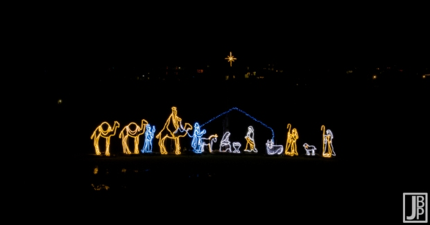 Very cool manger scene. These are almost life size wire frames wrapped in lights.
