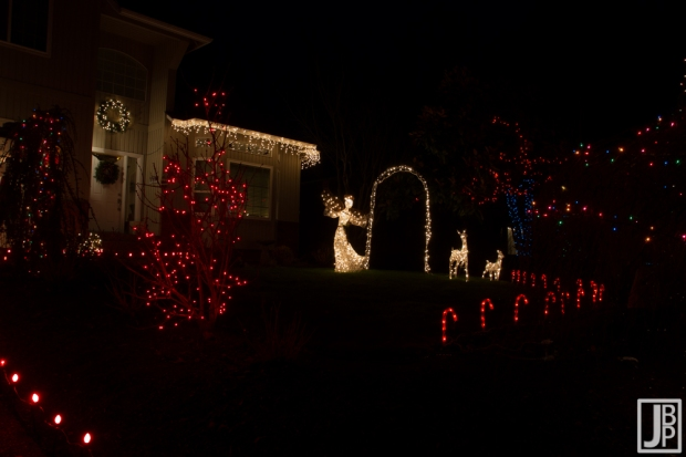 Some lights in the front yard