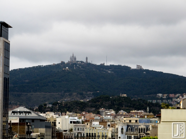 View from atop Casa Mila