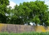 denbosch-16